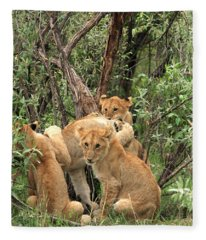 Masai Mara Lion Cubs Fleece Blanket