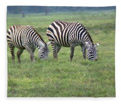 Pair Of Zebra Fleece Blanket