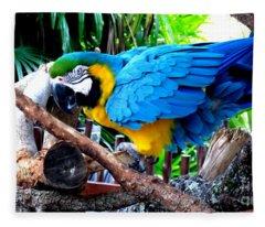 Parrot Greeting Card Fleece Blanket