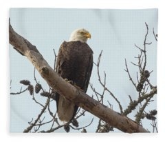Resting Bald Eagle Fleece Blanket
