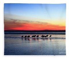 Shorebird Sunset Fleece Blanket