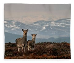 Sika Deer Fleece Blanket