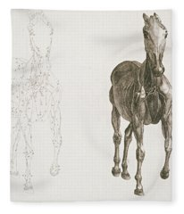 Tab Viii From The Anatomy Of The Horse Fleece Blanket