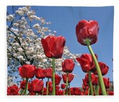 090416p031 Fleece Blanket