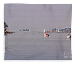 1-29-2055d Fleece Blanket