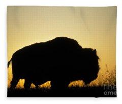American Bison Fleece Blanket
