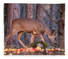 An Apple A Day... Fleece Blanket