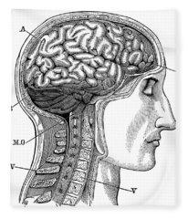 Anatomy: Brain Fleece Blanket
