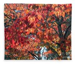 Fleece Blanket featuring the photograph Autumn Leaves by Rafael Salazar