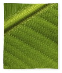 Banana Leaf Showing Rib Netherlands Fleece Blanket