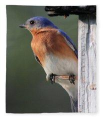 Bluebird Fleece Blanket