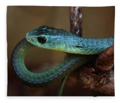 Boomslang Fleece Blanket