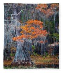 Caddo Lake Autumn Fleece Blanket