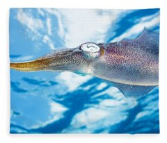 Caribbean, Reef Squid Sepioteuthis Fleece Blanket
