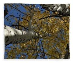 Fall Aspen Fleece Blanket