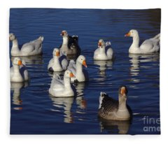 Family Goose Fleece Blanket