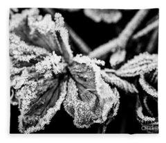 Frosty Flower Fleece Blanket