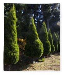 Funeral Cypress Trees Fleece Blanket