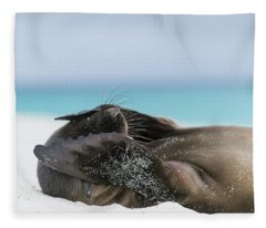 Galapagos Sea Lion Pup Covering Face Fleece Blanket
