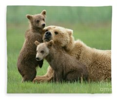 Grizzly Cubs Play With Mom Fleece Blanket