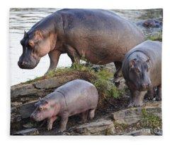 Hippopotamus Family Fleece Blanket