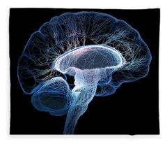 Designs Similar to Human Brain Complexity