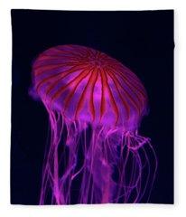 Jellyfish In Aquarium Of Quebec Fleece Blanket