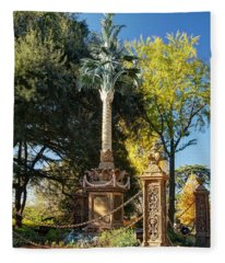 Palmetto Regiment Monument  Fleece Blanket