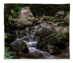 Parfrey's Glen Creek Fleece Blanket