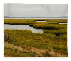 Fleece Blanket featuring the photograph Plum Island Marshes In Autumn 1 by Nancy De Flon