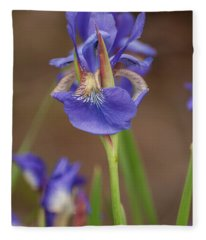 Purple Bearded Iris Fleece Blanket