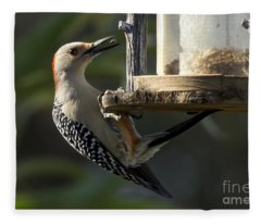 Red Bellied Woodpecker Fleece Blanket
