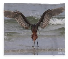 Reddish Egret Fishing Fleece Blanket