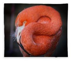 Resting Flamingo Fleece Blanket