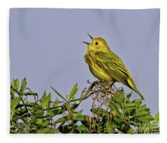 Singing Fleece Blanket