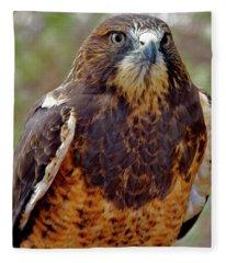 Swainson's Hawk Fleece Blanket