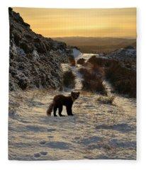 The Pine Marten's Path Fleece Blanket