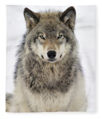 Timber Wolf Portrait Fleece Blanket