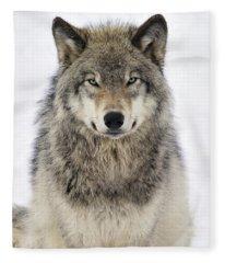 Timber Wolf Portrait Fleece Blanket