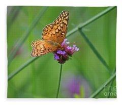 Variegated Fritillary Butterfly In Field Fleece Blanket