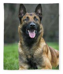 101130p022 Fleece Blanket