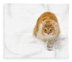 111230p310 Fleece Blanket
