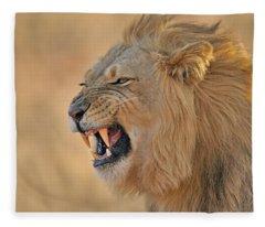 120118p081 Fleece Blanket