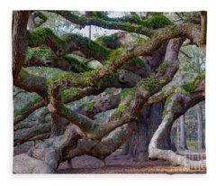 Angel Oak Tree Unique View Fleece Blanket
