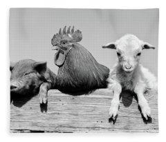 1960s Piglet Rooster Lamb Trio Leaning Fleece Blanket