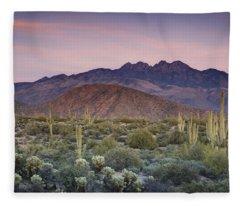 A Desert Sunset  Fleece Blanket