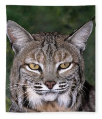 Bobcat Portrait Wildlife Rescue Fleece Blanket
