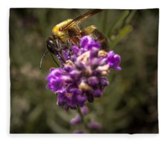 Carpenter Bee On A Lavender Spike Fleece Blanket