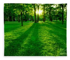 Green Park Fleece Blanket