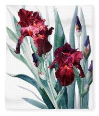 Dark Red Tall Bearded Iris Donatello Fleece Blanket